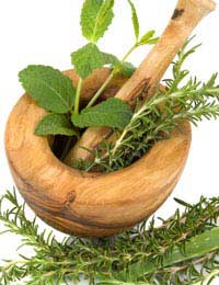 Treating Ocd With Herbal Remedies